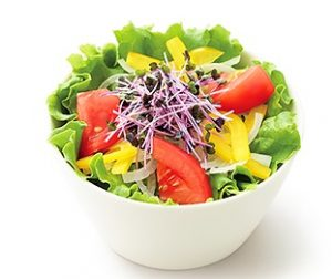 モスバーガー「こだわり野菜のサラダL 和風ドレッシング<減塩タイプ>」